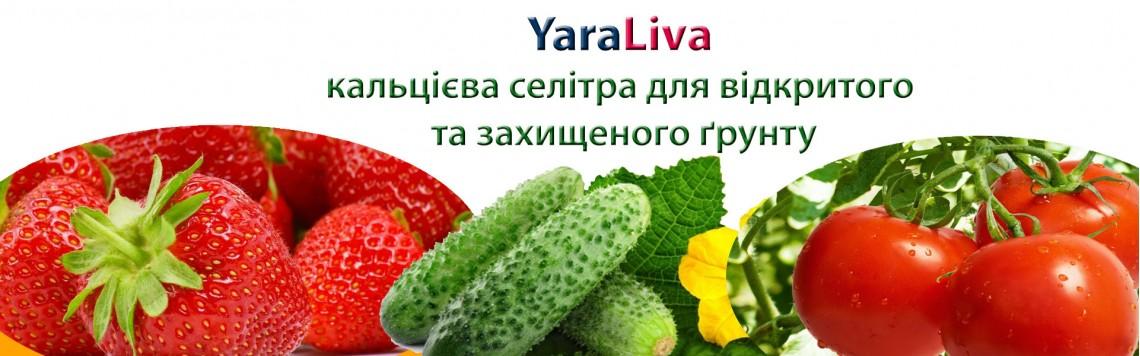 YaraLiva